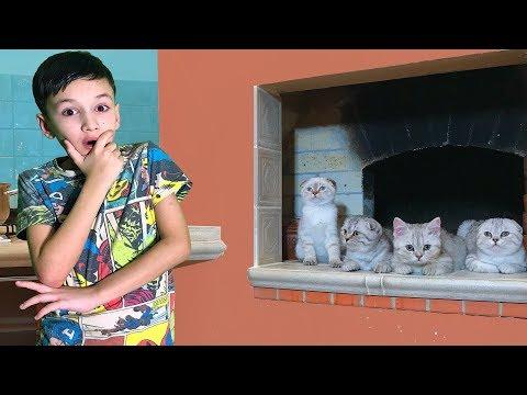 Вопрос: Отдать ли любимого кота ради ребенка сестры?