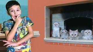 Задание для Артура! Потеряли Любимых Котят! Для детей Kids Children