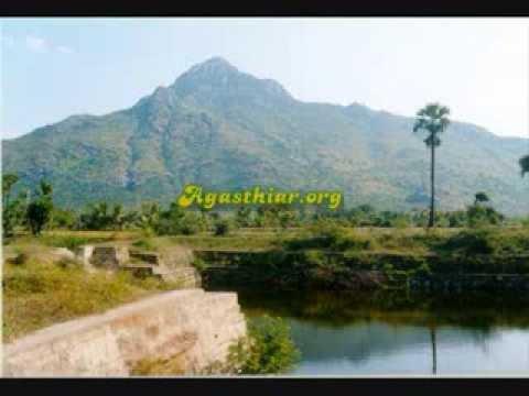 Arunachala Shiva. Siddha Hymn. Sing Along... Thiru Annamalaiyane Potri Potri!