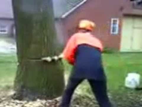 Baumfallung Geht Schief Youtube