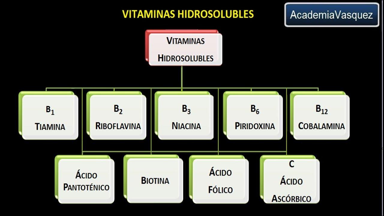 cuales son las vitaminas hidrosolubles y sus funciones