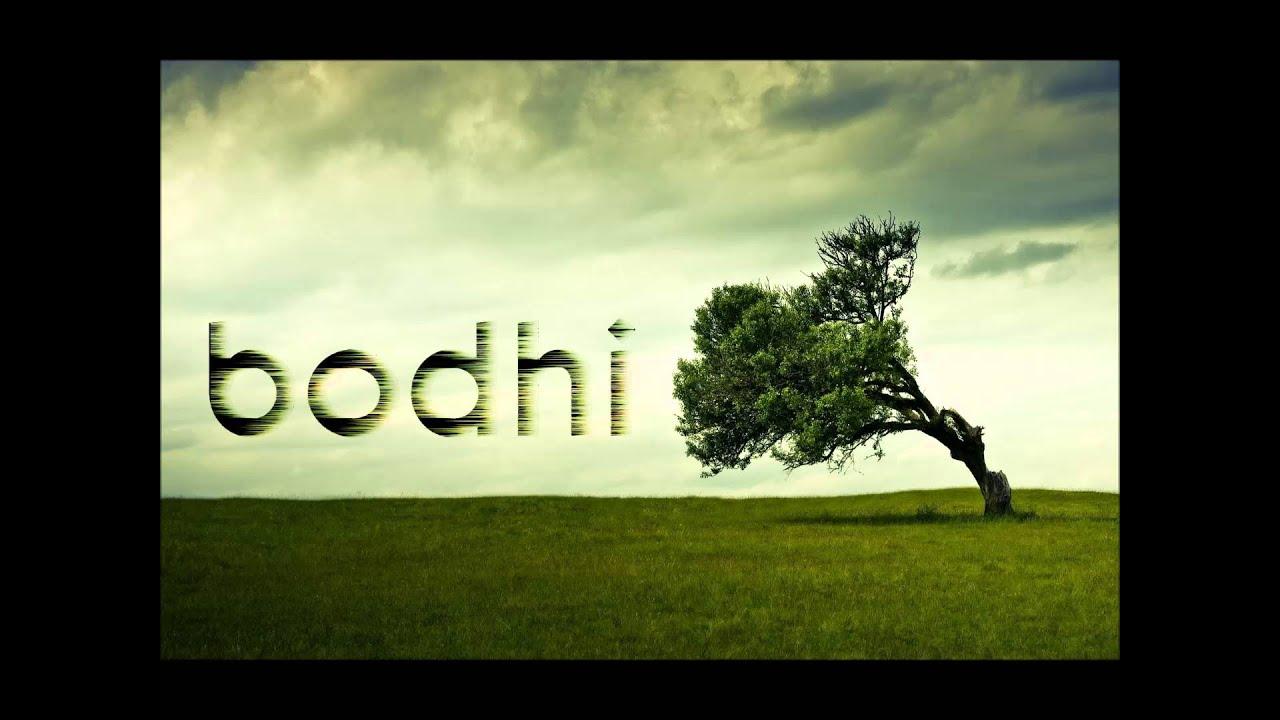 Inner Peace by Ani Choying Drolma