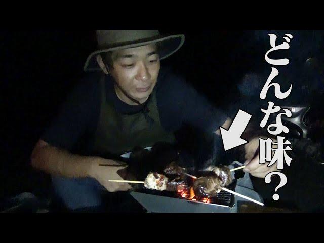 【初めての1人キャンプ】大本命「焼き三肉一体」完成!!