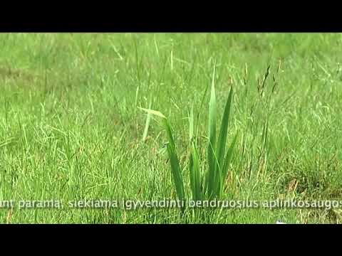 Aplinkosauga, gamtosauga, išmokos ūkininkams
