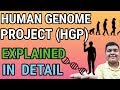 Human Genome Project Explained   Study of human DNA