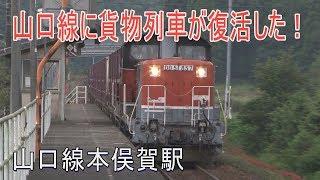 【駅に行ってきた】山口線本俣賀駅はコンクリートボード1面1線の駅