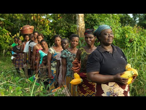 Meet the Women Cocoa Farmers Facing Adversity in the Ivory Coast