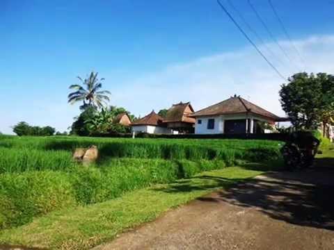 Land for sale in Bali, Wonderful view in Tabanan Bali -- TJTB119