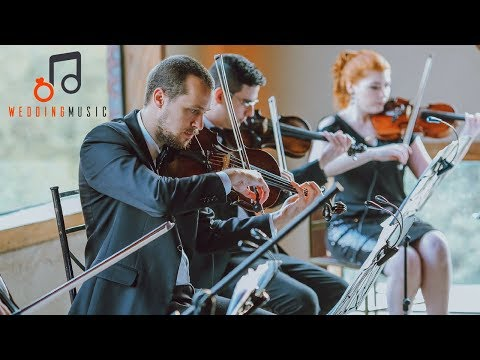 Classical & Pop Wedding Songs | Instrumental Music For Wedding [Live Orchestra]