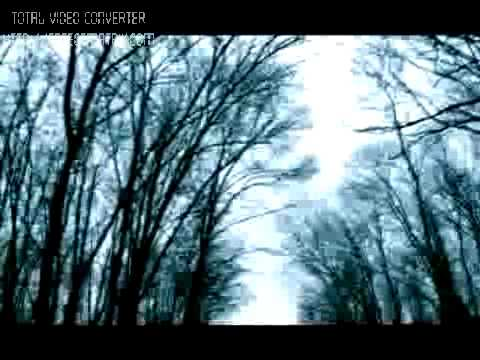 Stream of passion PAIN (subtitulado) mp3