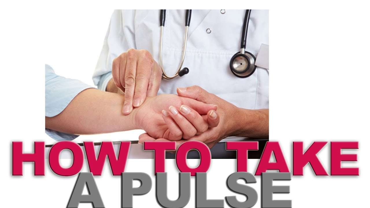 how to take aa pulse Radial pulse overview arteries carry oxygenated blood away from the heart to the tissues of the body veins carry blood depleted of oxygen from the same tissues back .