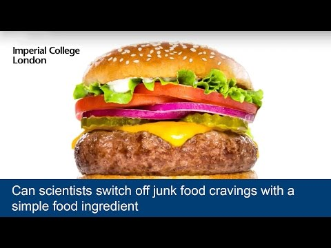 Can scientists switch off junk food cravings with a simple food ingredient? thumbnail