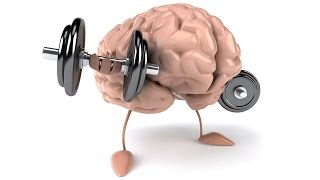 Питание мозга. БАД для улучшения работы мозга и памяти