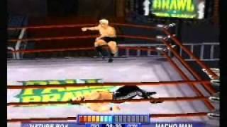 CAW Champion of Champions Title Match: Ric Flair vs. Randy Savage©