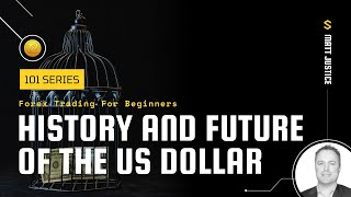 Forex Trading 101: History and Future of the USD