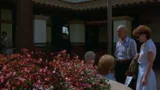 """Rain Man"" - Ending Scene HD"