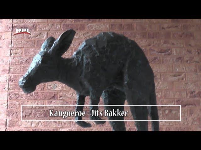 Beeld van de maand: Kangoeroe