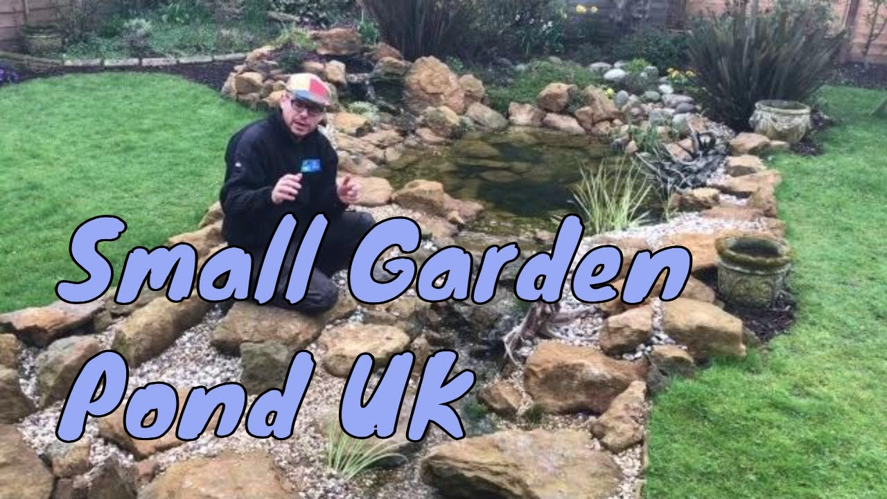 How to make a small garden pond youtube for Making a small pond
