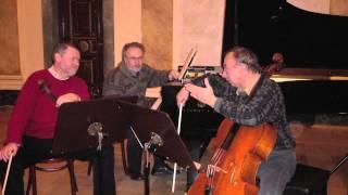 Romuald Twardowski (b.1930) Piano Trio (1987), Trio Cracovia: Smietana/Tryczynski/Tosik-Warszawiak