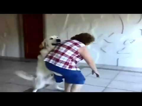 كلب يغتصب امرأة عجوز Grandma In Danger