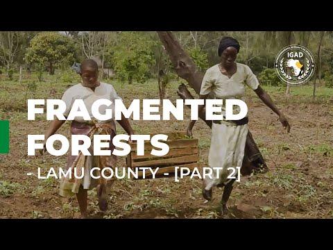 Fragmented forests: Lamu County [Part 2] - IGAD Biodiversity Management Programme