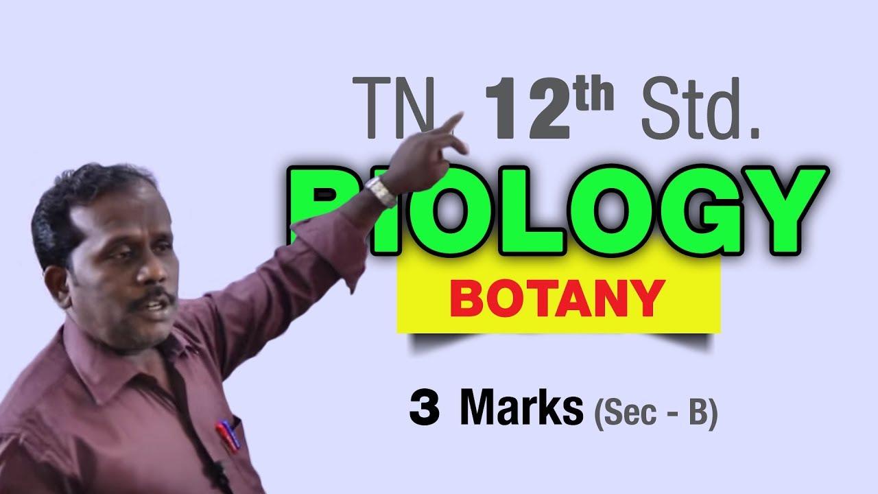 Tn 12th biology botany 3marks sec b youtube tn 12th biology botany 3marks sec b malvernweather Gallery