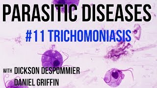 Parasitic Diseases Lectures #11: Trichomoniasis