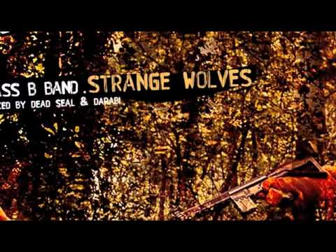 Class B Band - Strange Wolves (Dead Seal Remix) - My Favorite Robot Records (MFR038)