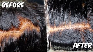 Quick & Easy : How To Fix Over Bleached Knots | ft. Asteria Hair