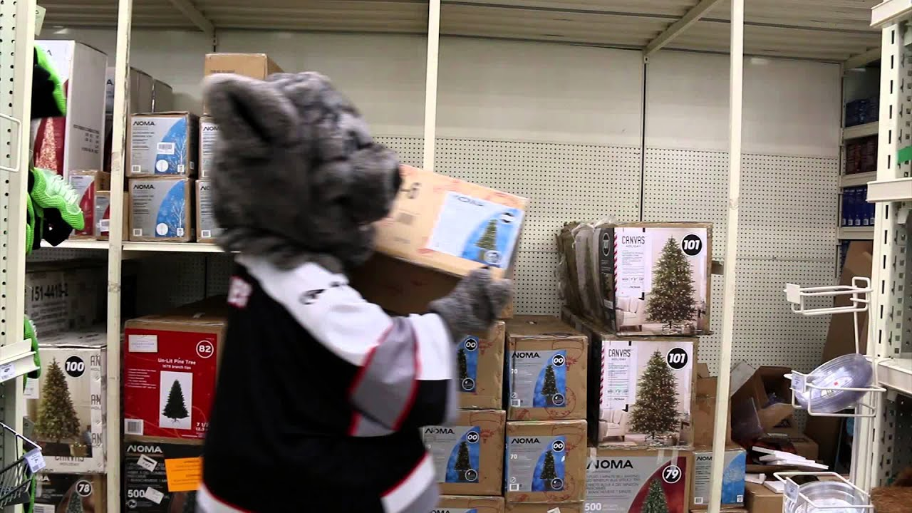 Canadian Tire Book Shelves 2015 Brampton Beast Commercial Canadian Tire 1 2