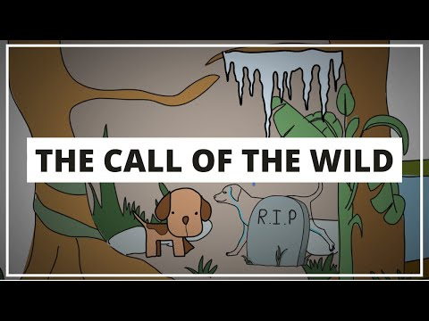 THE CALL OF THE WILD BY JACK LONDON - ANIMATED SUMMARY