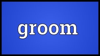 Groom Meaning