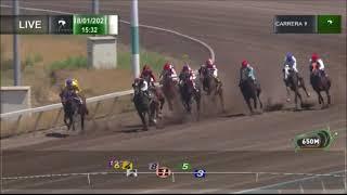 Vidéo de la course PMU PREMIO Y VOLVERE
