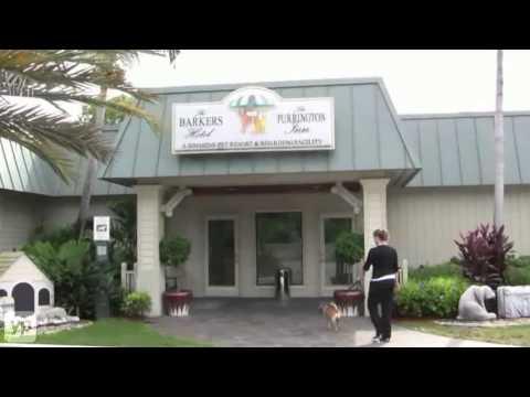 Greenacres, FL | Simmons Veterinary Hospital | Pet Hotel