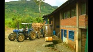 Agroenergía en Colombia, Planta de Biodiésel y Bioetanol