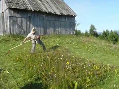 Carpathian mountain 5 x 5 metre mowing trial with a scythe