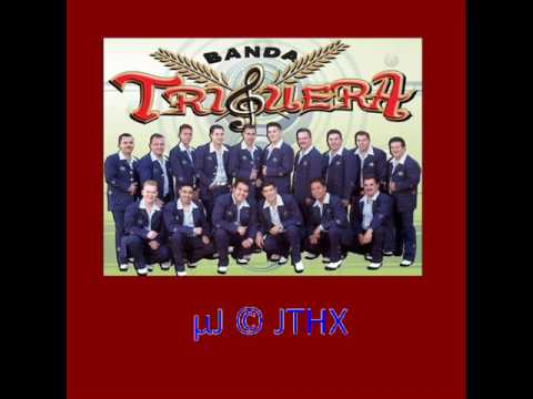 Banda Tigrera - Camisa Manchada