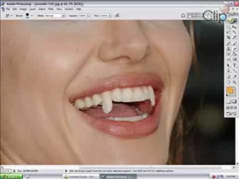 Xem video clip Hướng dẫn sử dụng Photoshop Pro   Video hấp dẫn   Clip hot   Baamboo com