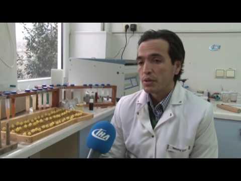 Arı Sütünün Kilosu 20 Bin TL
