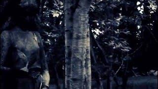 Nick Cave & The Bad Seeds - 'We No Who U R'