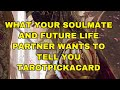 What your soulmate and future life partner wants you to know..tarotpickacard