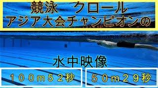 【クロール】プロ水泳選手のの水中映像!ポイント、ターンのコツなど。