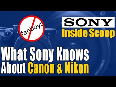 Should You Purchase A Sony Mirrorless Camera? Canon & Nikon Scoop That May Change Your Mind!