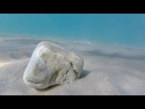 GoPro Hero4 Session - Trying out underwater