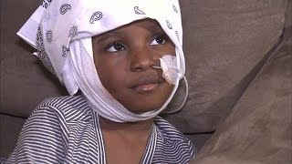 5-Year-Old Girl Recalls Being Attacked By Dog That Killed Friend