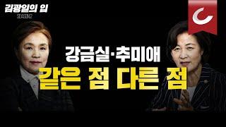 [김광일의 입] 강금실·추미애 같은 점 다른 점