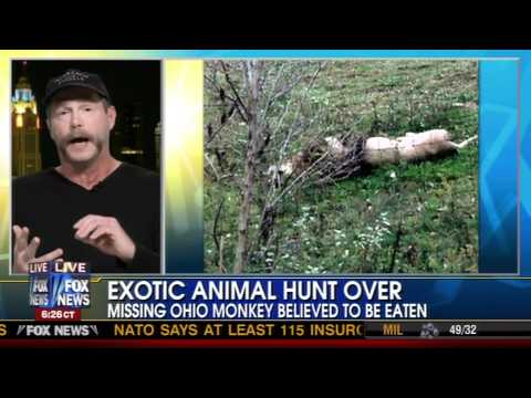 Fox News Zanesville Exotic Animal Tragedy Tim Harrison And The Elephant In The Living Room
