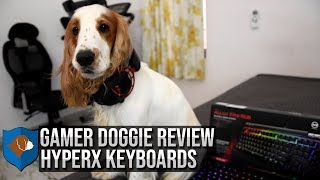 Gamer Doggies Review: HyperX Keyboards!