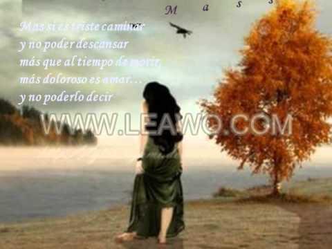 El arte de amar la historia de michalina wislocka - 4 9