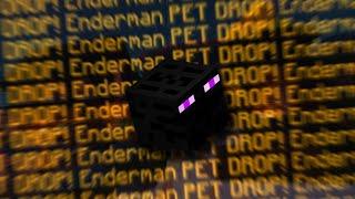I FINALLY GOT THE LEGENDARY ENDERMAN PET! Hypixel Skyblock